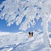 intro-to-backcountry skiing blackdiamondtours